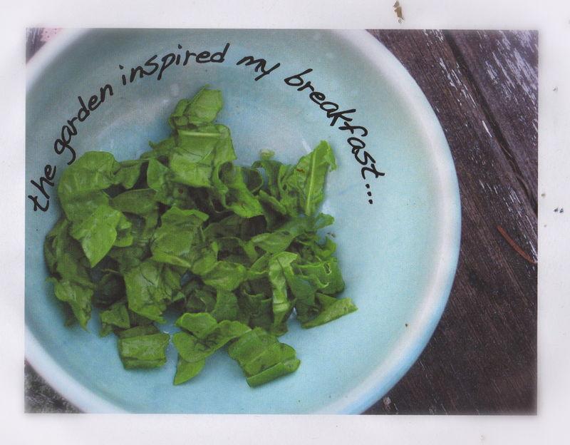 Spinach283