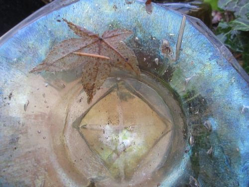 Glass and leaf