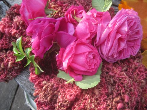 Rose knitting