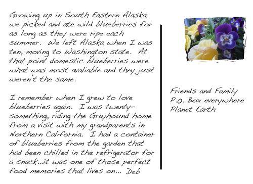 Postcard blueberries