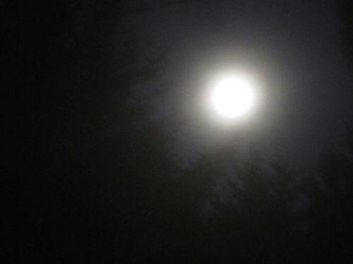 Moon sept
