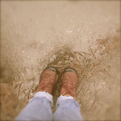 Rainy day puddle