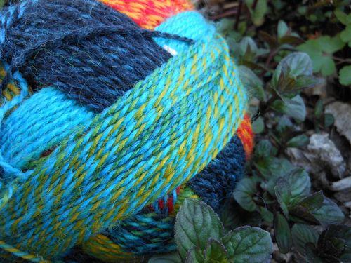 Next sock yarn
