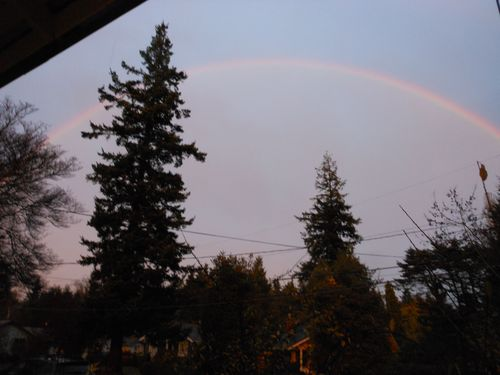 Rainbow in nov
