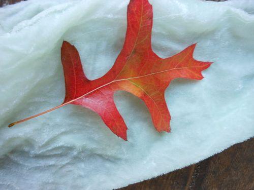First leaf