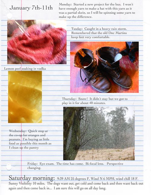 Jan 7 field notes for week_edited-1