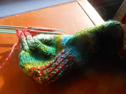 Feb bus sock