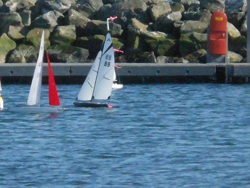 Boat races