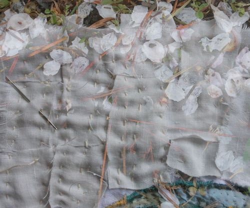 The petal line