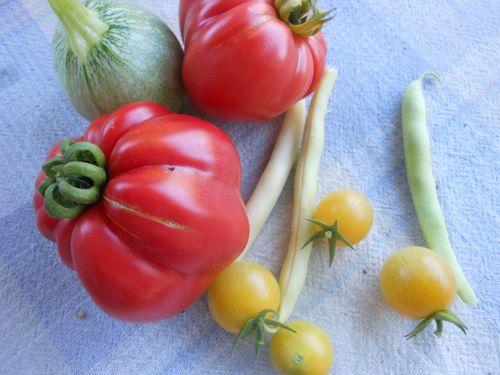 Side garden harvest