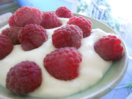 Raspberries with yogurt mousse