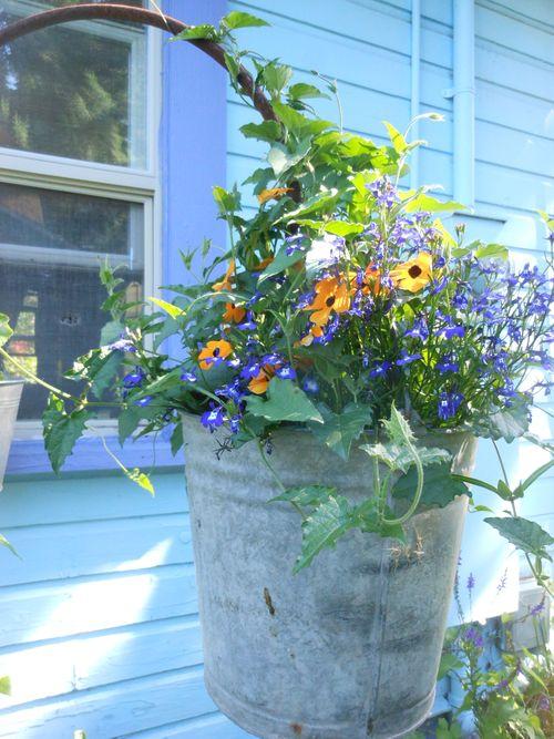 Bucket of flowers