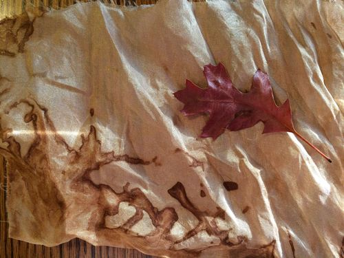 Leaf and dyed fabric