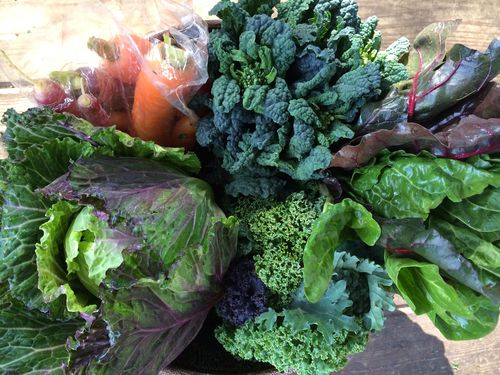Greens and carrots