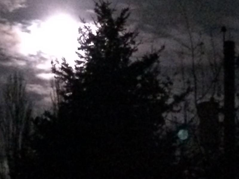 Moon so very bright