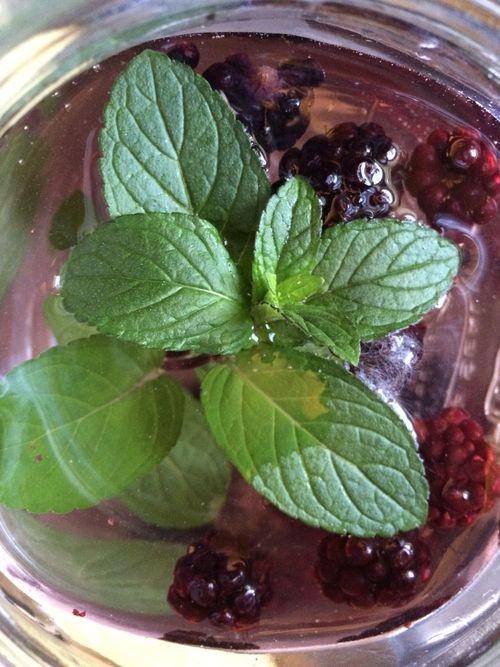 Frozen black berries and mint