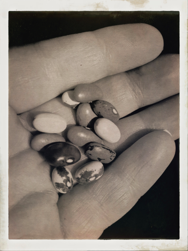 holding a handful of beans