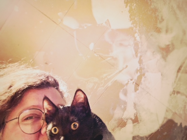 Widget and me