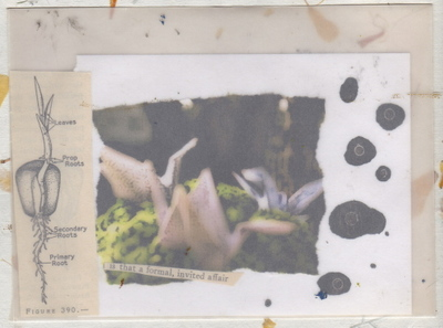 Envelope213