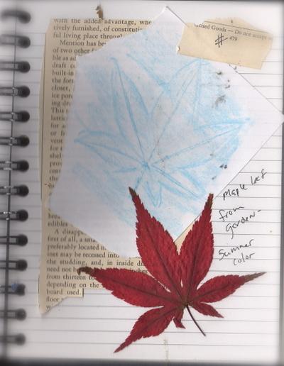 Leaf234