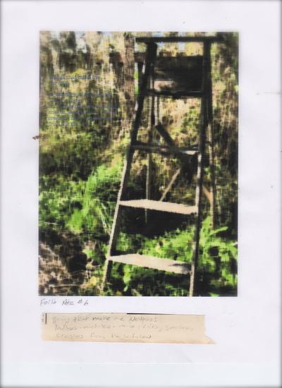Ladder263