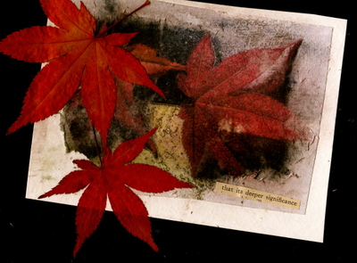 Fall_leaves_transfer271